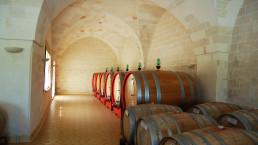 Masseria SURANI - cellar 3